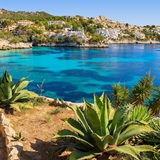 Koks gezocht op Mallorca