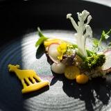 Cuisine on tour zoekt Chef-kok