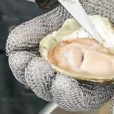 De Zeeuwse oester